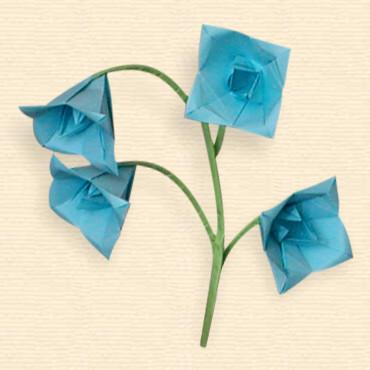 Oriland gallery bellflower bellflower by the shumakovs mightylinksfo
